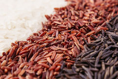 Strips of red, black and white rice close-up. Rice texture background. Macro Stock Images