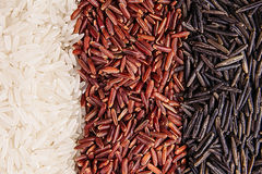 Strips of red, black and white rice close-up. Rice texture background. Macro Royalty Free Stock Photography