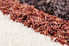 Strips of red, black and white rice close-up. Rice texture background. Macro Royalty Free Stock Photo