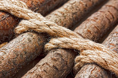 Strips of wood bound with rope Stock Photography