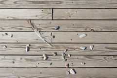 Strips of wood with stones and feather. Floor Royalty Free Stock Image