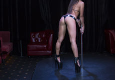 Striptease Stock Images
