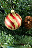 Stripy christmas ball. Cristmas tree in the background royalty free stock photos