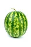 Stripy green watermelon Stock Photo