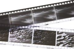 Strisce della pellicola Fotografie Stock Libere da Diritti