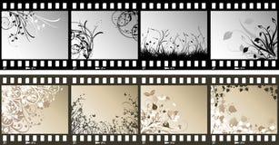 Strisce floreali della pellicola illustrazione di stock