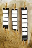 Strisce medie della pellicola di formato, Fotografia Stock Libera da Diritti
