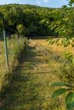 Strisce verdi merlettate su un campo recintato da un recinto da una griglia con un filo spinato sulla cima Fotografia Stock Libera da Diritti