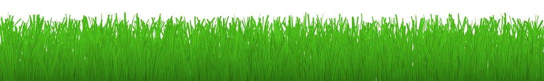 Striscia orizzontale di erba - Fotografia Stock Libera da Diritti