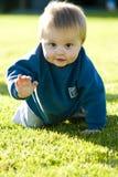 Strisciare del bambino Fotografia Stock