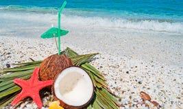 Stro, kokosnoten en zeester royalty-vrije stock fotografie