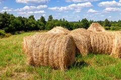 Strobalen op landbouwgrond in de zomerdag Stock Foto