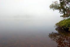 Strobg mgła zdjęcia stock