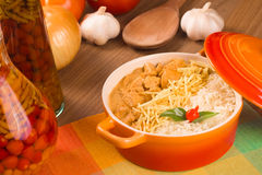 Stroganoff Chicken with rice Royalty Free Stock Image