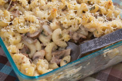 Stroganoff Mac & Cheese Stock Photo
