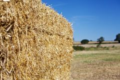 Stroh-Ballen Lizenzfreies Stockfoto