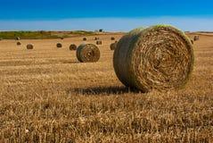 Stroh-Ballen auf Ackerland Lizenzfreie Stockfotografie