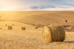 Stroh-Ballen am Sonnenuntergang Lizenzfreies Stockfoto