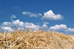Stroh, blauer Himmel und Wolken Lizenzfreie Stockfotos