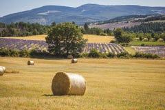 Stroh emballiert Provence Frankreich Lizenzfreie Stockfotos