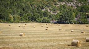Stroh emballiert Provence Frankreich Lizenzfreies Stockfoto