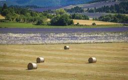 Stroh emballiert Provence Frankreich Lizenzfreie Stockbilder