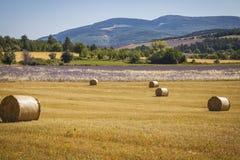 Stroh emballiert Provence Frankreich Stockfotografie