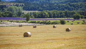 Stroh emballiert Provence Frankreich Stockfotos