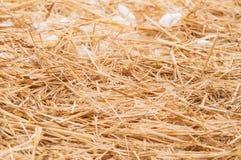 Stroh mit Schnee Lizenzfreie Stockfotografie