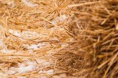 Stroh mit Schnee Lizenzfreie Stockbilder