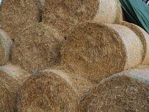 Stroh preßt geheftet in Natur zusammen Stockbild