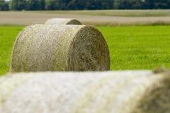 Stroh rollt im Fokus Stockfotografie
