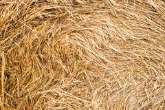 Stroh, trockener Strohbeschaffenheitshintergrund, Weinleseart für Design lizenzfreie stockfotografie