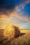 Strohballen auf Ackerland mit bewölktem Himmel Lizenzfreie Stockfotografie