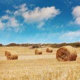 Strohballen auf Ackerland mit blauem Himmel Lizenzfreie Stockbilder