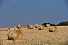 Strohballen auf Ackerland mit blauem Himmel Lizenzfreies Stockbild