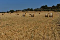 Strohballen auf Ackerland mit blauem Himmel Lizenzfreies Stockfoto