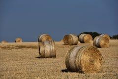 Strohballen auf Ackerland mit blauem Himmel Lizenzfreie Stockfotos