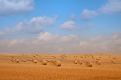 Strohballen auf endlosem Ackerland Stockbilder