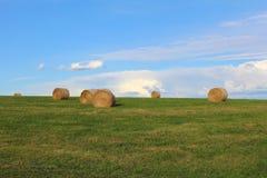 Strohballen auf grüner Wiese mit blauem Himmel Lizenzfreies Stockfoto