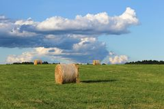 Strohballen auf grüner Wiese mit blauem Himmel und Wald Lizenzfreie Stockfotografie