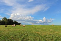 Strohballen auf grüner Wiese mit blauem Himmel und Wald auf linker Seite Lizenzfreies Stockbild