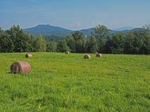 Strohballen auf Wiese des grünen Grases mit Baum, Hügeln und blauem Himmel Stockbild