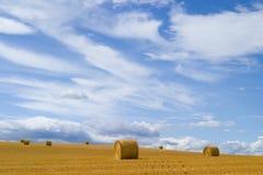 Strohballen im Grasland Stockbilder