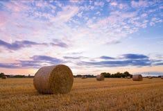 Strohballen nach Ernte zur Sonnenuntergangzeit lizenzfreie stockfotos