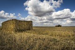 Strohballen, Traktor auf dem Horizont, blaue Himmel der flaumigen Wolke Stockfoto