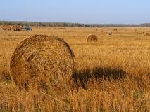 Strohballen und -traktor auf geerntetem Getreidefeld, Herbst agricu lizenzfreie stockfotografie