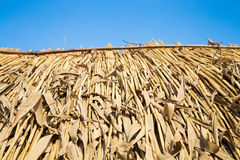 Strohdach an der Hütte Lizenzfreies Stockfoto