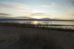 Strohe auf dem Strand Stockfotos