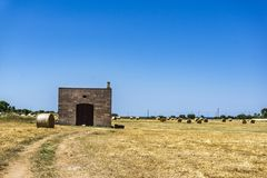 Strohfeld mit alter verlassener Ablagerung, Monopoli - Apulien Puglia lizenzfreie stockfotos